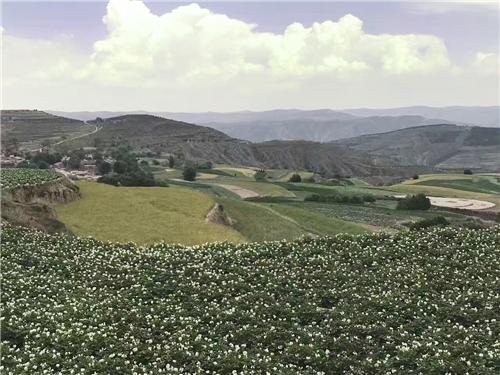 定西土地种植基地